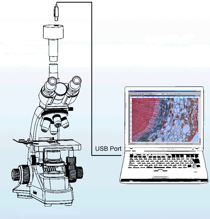 Микроскоп монокулярный Микромед 2 вар. 2-20